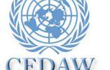 Un comité de l'ONU fait pression sur Andorre en faveur de l'avortement et de la théorie du genre