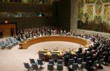ONU : L'Eglise en pleine incohérence