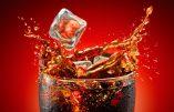 Le lobby homosexuel harcèle Coca-Cola, sponsor des Jeux olympiques de Sotchi