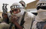 Le développement du djihadisme en Afrique préoccupe notre état-major