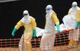 Le virus d'Ebola est-il à nos portes ? Qu'attendent nos gouvernants pour interrompre les vols en provenance d'Afrique de l'Ouest ?