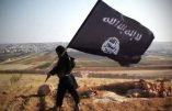 Une grande base irakienne encerclée par les djihadistes