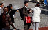 Réseau de voleurs roms : des enfants devaient ramener deux portefeuilles chaque jour