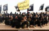 Information censurée : 20 000 uniformes militaires de l'Etat Islamique ont été saisis à Valence et Alicante en Espagne
