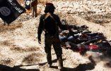 La réalité de l'Etat Islamique en Irak et au Levant