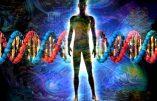 Votre portrait par l'ADN