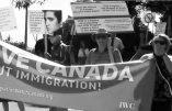 Canada : arrestation de faux «consultants en immigration»