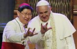 Pape François « Certains croient […] que, pour être bons catholiques, ils doivent être comme des lapins ! »