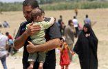 l'Etat Islamique massacre 503 personnes, femmes et enfants, à Ramadi en Irak à 120 km de Bagdad