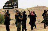 Les djihadistes de l'Aqmi revendiquent l'embuscade ayant coûté la vie à 14 militaires algériens
