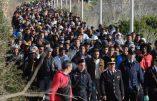 Lampedusa, tête de pont du Califat en Europe