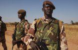 Opérations anti-jihadistes à la frontière entre le Mali et la Côte d'Ivoire
