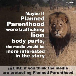 PlannedParenthood-BodyPartsForSale-LionKilled