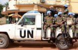 Viol présumé d'une mineure de 12 ans par les soldats de la paix en Centrafrique : le chef de la MINUSCA débarqué