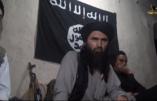 Le Mouvement Islamique d'Ouzbékistan fait allégeance à l'Etat Islamique