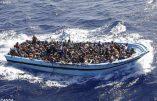 Immigration : plus de 200 disparus après un nouveau naufrage au large de la Libye