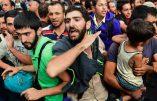 Grand remplacement: plus de 710 000 clandestins seraient entrés en UE en 9 mois, mais combien en plus ne sont pas comptabilisés ?