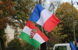 Plusieurs centaines de personnes devant l'ambassade de Hongrie à Paris en soutien à Viktor Orban