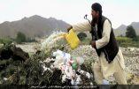 Afghanistan – L'Etat Islamique rivalise avec les Talibans