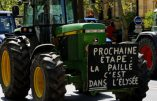 Hallucinant: 27 suicides par jour, agriculteurs en tête. Que fait le gouvernement ? Il finance l'emploi en Tunisie!