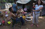 Les dizaines de bidonvilles pour blancs d'Afrique du Sud
