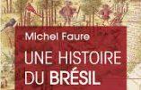 Une histoire du Brésil (Michel Faure)