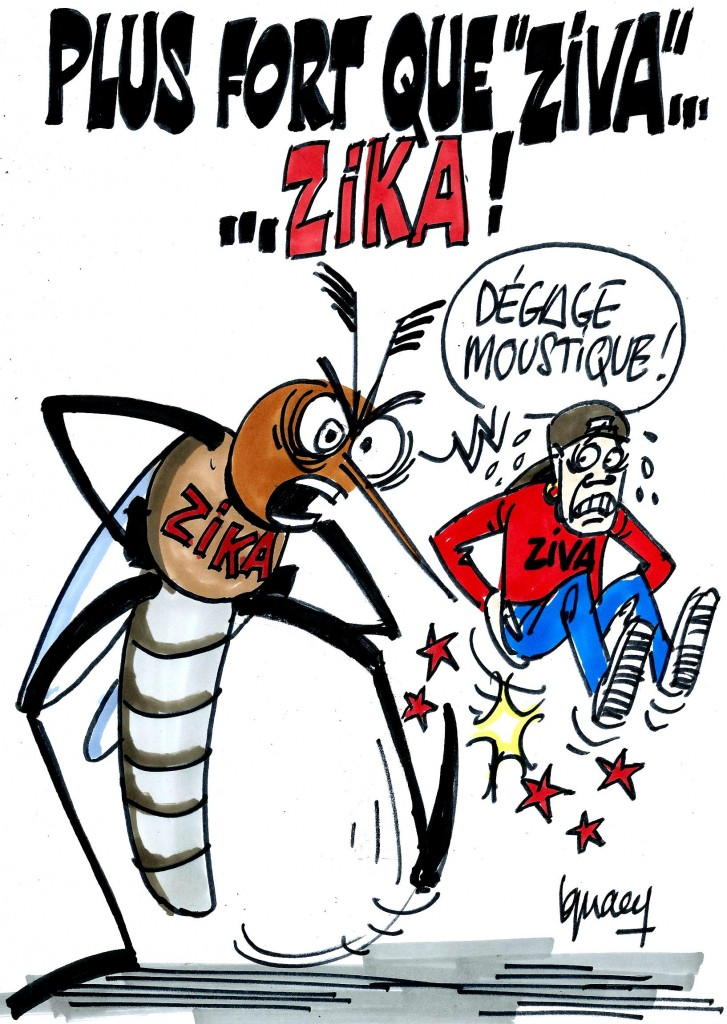 Ignace - La menace du virus zika