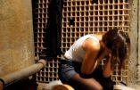 Italie : un immigré illégal arrêté pour viols et diffusion de pédopornographie