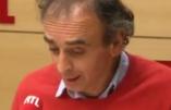 Eric Zemmour : «C'est Ali Juppé qui a perdu la primaire»