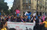 Grande manifestation contre la marchandisation du corps et la GPA dont la loi se discutait à l'Assemblée
