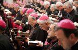 La Conférence des évêques italiens : «Accueillir tous les migrants»