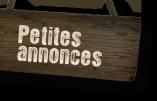 L'expansion des petites annonces sur le web