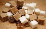 Qui se sucre sur le sucre ?