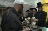 Kapparot :  Le massacre expiatoire la veille de Yom Kippour