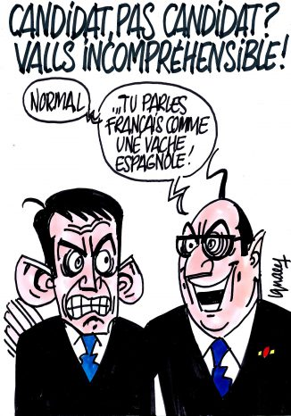 Ignace - Valls candidat ou pas ?