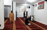 Menaces des musulmans en Italie : «redonnez-nous nos mosquées illégales ou nous prierons Allah au Vatican»