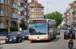 Belgique:des chauffeurs de bus prient pendant le service