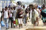 154 demandes d'asile de Sénégalais, enregistrées en France, pour persécution en tant qu'homosexuels