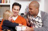 Homoparentalité : après le mariage, l'adoption…