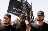"""Les djihadistes """"belges"""" de Syrie inquiètent les services de sécurité belges"""