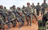 L'armée canadienne doit faire face à des choix impossibles
