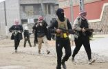 Quand j'ai appris la prise de Fallouja par Al-Qaïda…