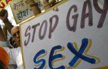 La Haute Cour indienne rejette le recours LGBT : l'homosexualité reste interdite
