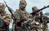 Les islamistes de boko haram égorgent 10 pêcheurs