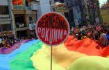 Turquie – Quatre élus favorables à la théorie du genre