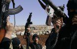 La France expulse un algérien soupçonné de recruter pour le djihad en Syrie