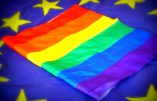 Rome – Propagande gay à la place de la crèche, place Navona