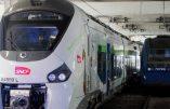 Les TER achetés par la SNCF sont trop larges ! 50 millions d'euros pour modifier les quais !