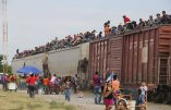 Immigration mexicaine: le train de la mort