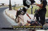 Bientôt la fin de l'Etat Islamique ?